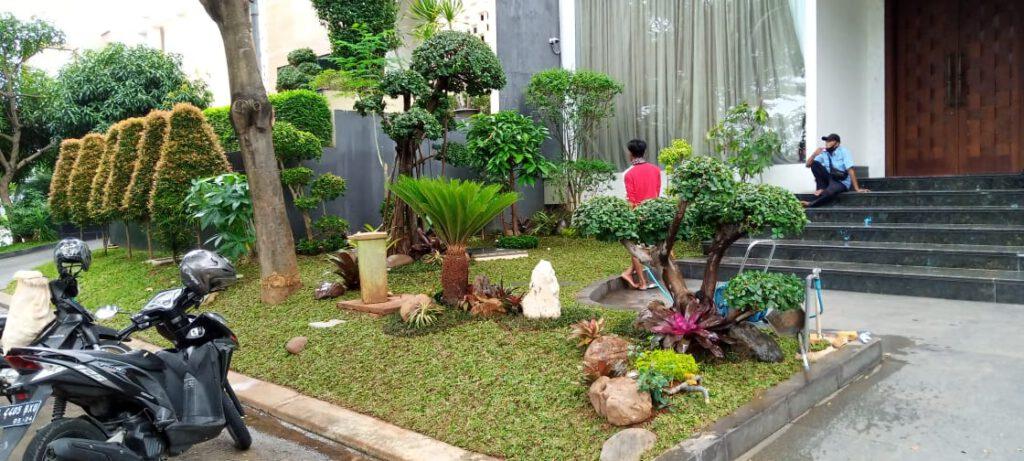 Profil tukang taman murah di Jakarta